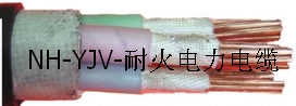 NH-YJV电力电缆