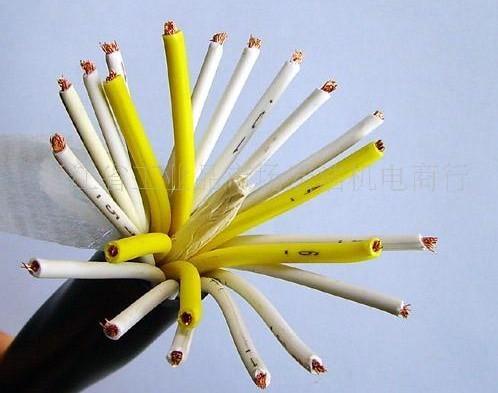 聚氯乙烯控制电缆