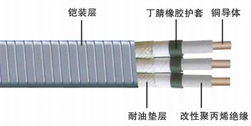 QYPN潜油泵电缆