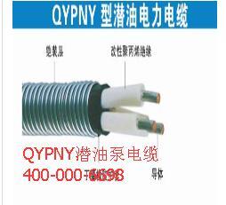 QYPNY潜油泵电缆