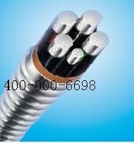 AC90铝合金电力电缆