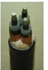 6/6KV高压电力电缆
