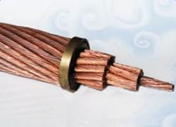 TJR软铜绞线