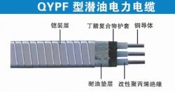 QYPF潜油泵电缆